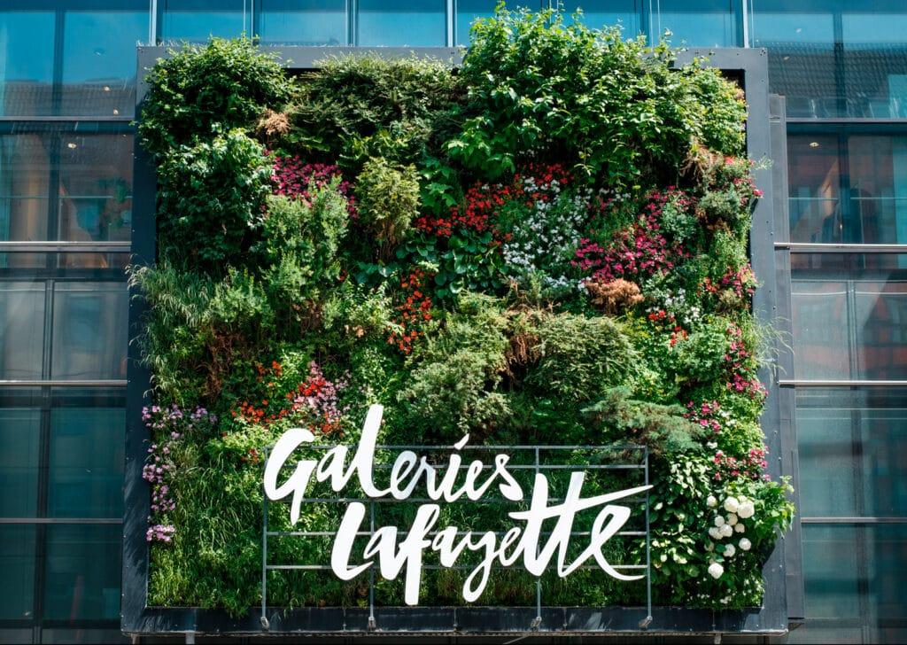 Jardines verticlaes para la decoración de oficinas
